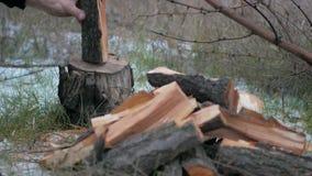 Houthakkers hakkend hout stock video