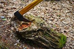Houthakkersbijl in het hout Stock Foto's