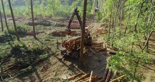 Houtlading, ladingslogboeken in een vrachtwagen, houtverwerking, ontbossing, houtlading met een klauw stock video