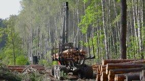 Houtlading, ladingslogboeken in een vrachtwagen, houtverwerking, ontbossing, houtlading met een klauw stock videobeelden