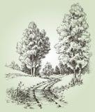 Houtlandschap stock illustratie
