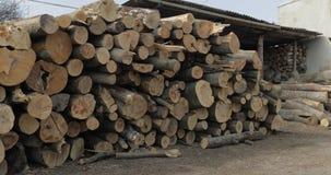 Houtregistreren Snijd omhoog opgestapelde boom vers houten logboeken Houten opslag voor de industrie stock fotografie