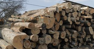 Houtregistreren Snijd omhoog opgestapelde boom vers houten logboeken Houten opslag voor de industrie stock foto's