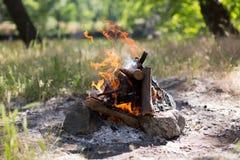 Houtskool en brand Stock Fotografie
