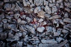 Houtskool en brand Stock Afbeeldingen