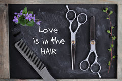 Hove is in the Hair quotation. Hair Cutting and Thinning Scissors on vintage background. Hairdresser salon concept. Haircut access Stock Photography