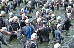Hove Triathlon Stock Images