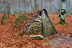 Hovel in autumn Royalty Free Stock Photography