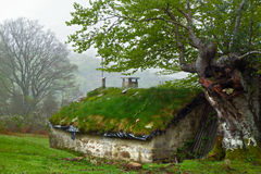 Hovel in the forest Royalty Free Stock Images