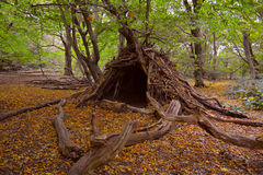 Hovel in the woods Royalty Free Stock Images