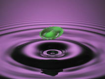 Hovering green splash on purple Royalty Free Stock Photos