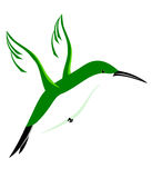 Hovering Hummingbird. Abstract hovering hummingbird on white background Vector Illustration