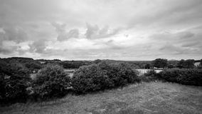 Hovering a meadow with wild grass and flowers and soaring over a nice countryside showing plots, trees, hedgerows and soft hills. Black and white scenic 4K stock video footage