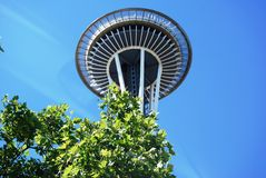 Hovering Space Needle. Space Needle ascends from the trees into a clear blue sky Royalty Free Stock Images