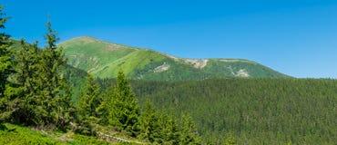 Hoverla - la plus haute montagne de l'Ukraine images libres de droits