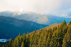 Hoverla mountain in the mist Royalty Free Stock Photos