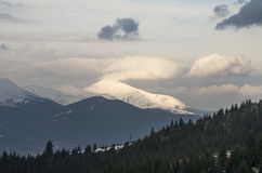 Hoverla mountain in spring. Royalty Free Stock Photo