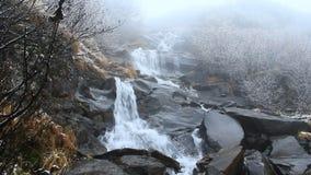 Hoverlyanski cascade waterfall in October stock video