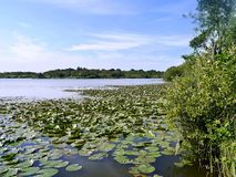 Hoveton Great Broad in Norfolk, England Royalty Free Stock Photos