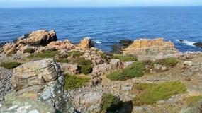 Hovs Hallar,瑞典的西南的岩石海岸 免版税图库摄影