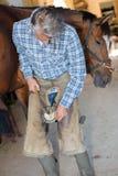 Hovslagaren spikar hästskon till hästklöven royaltyfria bilder