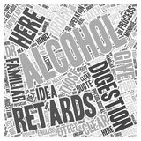 HOW ALCOHOL RETARDS DIGESTION word cloud concept word cloud concept  background Royalty Free Stock Photos