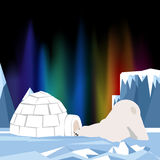 How do I get in there. Asking himself the big bear as he tried to enter a small igloo. Colorful aurora borealis sky ever Stock Photography