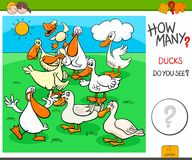 How Many Ducks Educational Task Stock Images