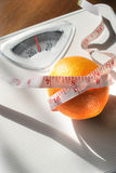 How much does an Orange Weigh? Royalty Free Stock Images