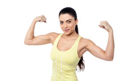 How is my biceps. Royalty Free Stock Photos