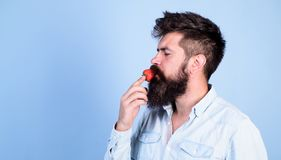 That is how tastes summer. Man handsome hipster with long beard eating strawberry. Hipster enjoy juicy ripe red. Strawberry. Man enjoy berry aroma. Berries royalty free stock photos