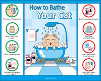 How  to Bathe Your Cat vector graphic guide Royalty Free Stock Images