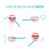 How To Brush Your Teeth. Vector. How To Brush Your Teeth. Brushing Tooth. Poster with the Instruction Manual. Order Correct Movements. Vector illustration Stock Photos