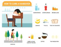 How to cure a hangover infographics.illustration. How to cure a hangover infographics.vector illustration vector illustration