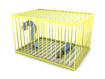 How to find the answer. Exclamation and question marks in gold cage. Stock Photography