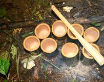 How to live in the forests and livelihoods. Living in the forest and cooking Stock Photography