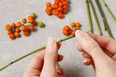 How to make autumn napkin ring with rowan berry - tutorial. Step by step stock photos