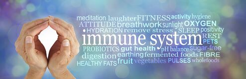 Free How To SHIELD And Boost Your Immune System Word Cloud Stock Photos - 176783133