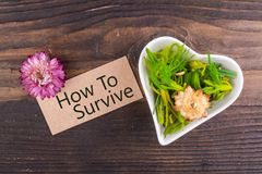 How to survive word on card. With dried flower and heart shape bowl on wood royalty free stock photo