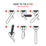 How to tie a tie instructions. Four-In-Hand knot vector illustration