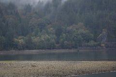 Howe dźwięka linia brzegowa zdjęcie stock