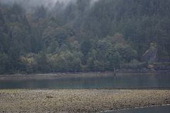 Howe Sound Küstenlinie stockfoto