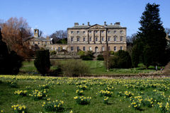 Howick Hall. Scenic view of Howick Hall with blooming daffodils in foreground, Northumberland, England stock photo