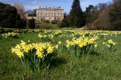 Howick Hall gardens Stock Image