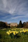 Howick Hall gardens Royalty Free Stock Images