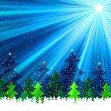 howing bont-bomen ï ¿ ½ onder een sneeuwval bij nacht. EPS 8 Stock Fotografie