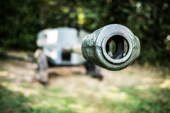 howitzer Royaltyfria Foton
