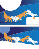 Howl at the moon. Two banner designs with howling wolves Stock Photography