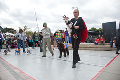 Howl'oween Pet Parade & Faire Pet Royalty Free Stock Photography
