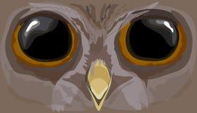 Howlet иллюстрации Голова сыча Стоковые Изображения RF